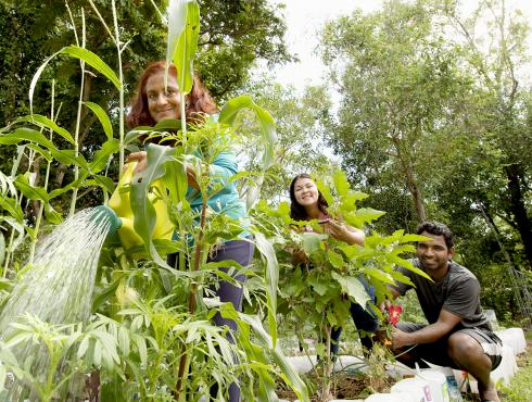 Residents set up forest garden for a sustainable future